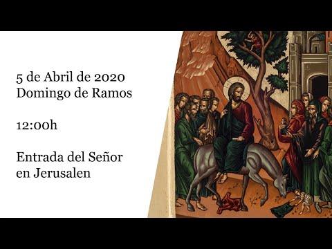 Misa de Palma desde la Basílica Nuestra Señora de los Milagros