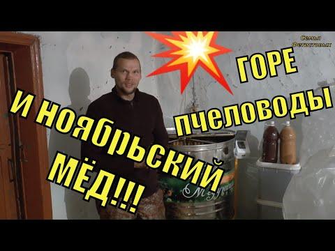 Горе ПЧЕЛОВОДЫ и ноябрьский МЁД!