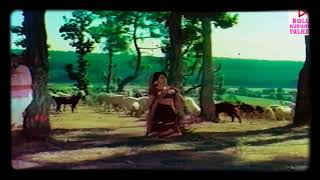 Holi Aai Re Hit Hindi Movie Songs