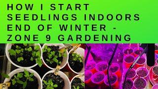 How I Start Seedlings Indoors End Of Winter -Zone 9 Gardening