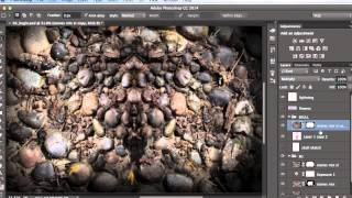 Photoshop Tutorial Now Availalbe: Designing a Surreal Skull