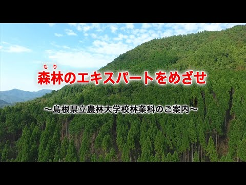 島根県立農林大学校林業科 学校案内「森林(もり)のエキスパートをめざせ」