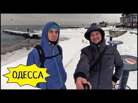 , title : 'Зимняя ОДЕССА ❄️ Дельфины 🐬 Чайки И Макс Липатов! ВЛОГ #4'