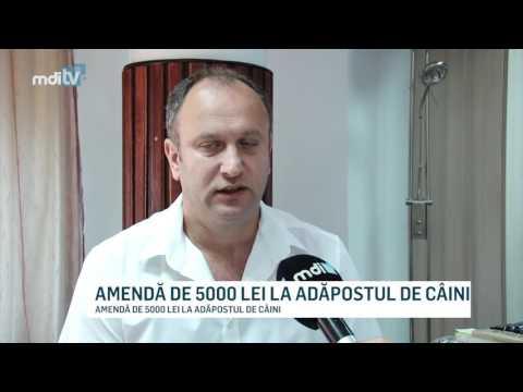 AMENDA DE 5000 LEI LA ADAPOSTUL DE CAINI TARGOVISTE