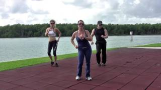 Samba CARDIO FITNESS, Workout 3, StepFlix Lessons. by StepFlix
