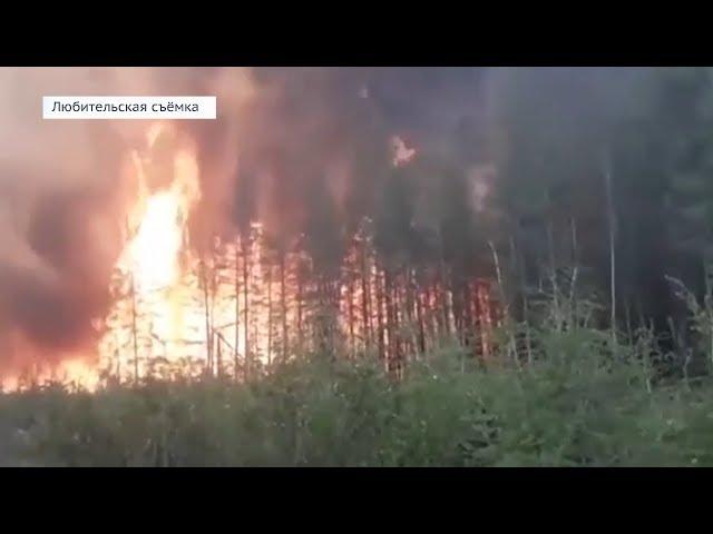 В Приангарье продолжает гореть лес