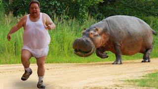 동물을 무서워하는 재미있는 사람들 😅 🦚🦘 재미있는 비디오 2020
