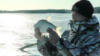 Рыбалка на оби новосибирская область сузун
