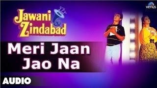 Jawani Zindabad : Meri Jaan Jao Na Full Audio   - YouTube