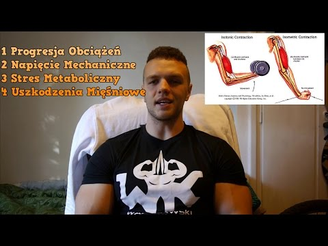 Ćwiczenia izometryczne mięśni ud