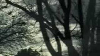 Dandy Warhols Sleep Music Video