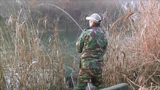 RIVER DEARNE BARNSLEY BARBEL CHALLENGE 7TH JANUARY 2017