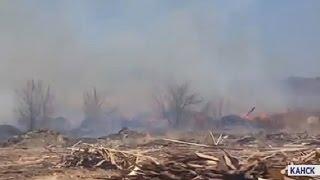В Канске загорелась свалка лесопильных отходов