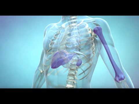 Glyukobay un insulīna