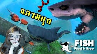 พี่ฉลามขาโหด จอมวายร้ายแห่งท้องทะเล   Feed And Grow [zbing Z.]