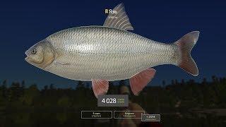 Рыбалка 3 поймать язя на озере
