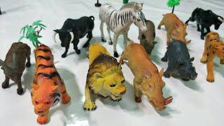 Bộ đồ chơi động vật-bé học những con vật