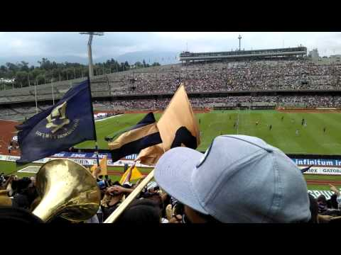 """la rebel pumas vs pachuca 2014"" Barra: La Rebel • Club: Pumas"