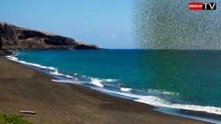 preview picture of video 'Saint Paul Île de la Réunion - Mi aime à ou!'