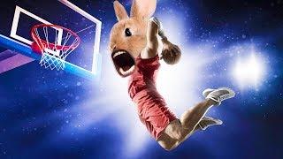 BUNNY BASKETBALL   Super Bunny Man w/ Jack, Bob, Wade