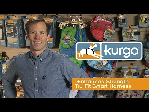 Kurgo Enhanced Strength Tru-Fit Smart Harness with Seatbelt Tether (Large) - Black Video
