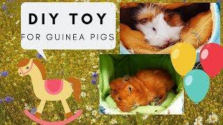 Guinea Pig DIY Toy