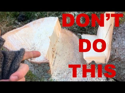 NEVER Do This When Cutting Down A Tree!!