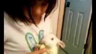 Maria Feeding Her Bunny
