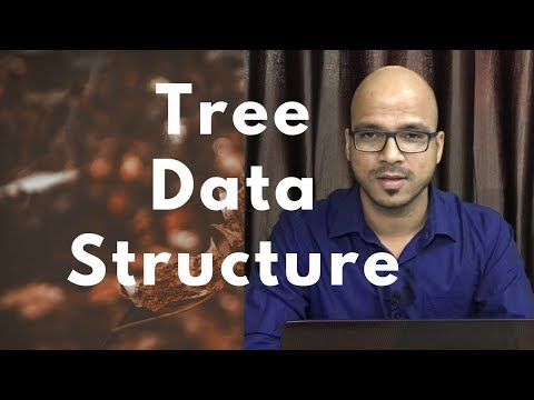 #16 Tree Data Structure