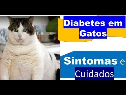Diabetes Lenina 50