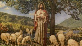'diretta Santa Messa IV DOMENICA DI PASQUA' episoode image