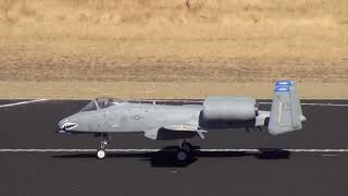 Rob Merriman Freewing A-10 Maiden Flight