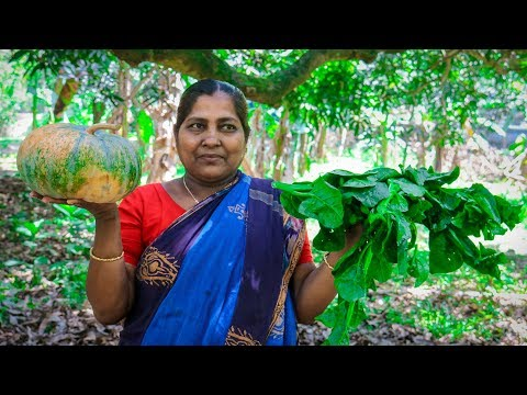 Vegetable Recipe: Pumpkin and (Basella) Malabar Spinach Village Cooking Recipe | Village Food Life