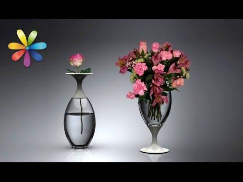 Как легко и просто отмыть вазу, чтоб она засияла, как новая – Все буде добре. Выпуск 694 от 27.10.15