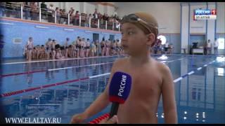 Сексуальные пловцы соревнуются