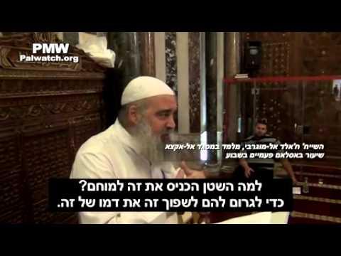 השקרים שמספרים על היהודים במסגד אל אקצא