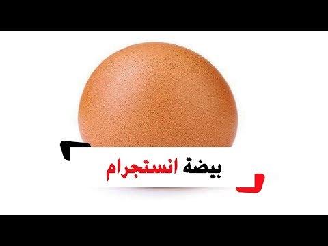 قصة البيضة التي حصدت ٤٤ مليون إعجاب