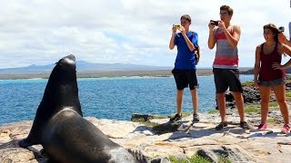 GoBeyond - Ecuador & Galapagos Summer Program For High School Students