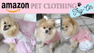 Amazon Pet Clothing Haul & Try-On | Fashion For Dogs