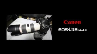 Canon EOS 1D X MarkⅡ 開封の儀