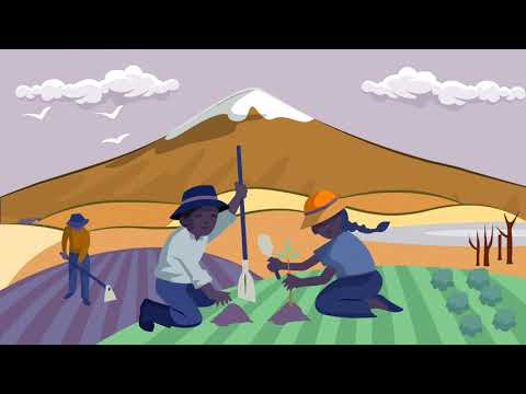 Presentación del proyecto Paisajes Andinos para impulsar la producción sostenible en Ecuador