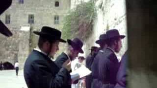 preview picture of video 'praying jews at the western wall'