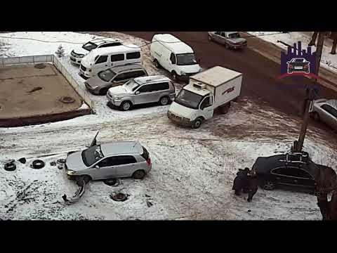 Автоледи паркуясь сбила девушку
