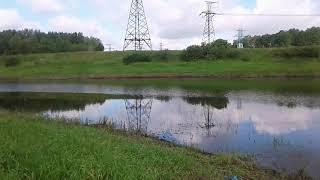Кузьминское водохранилище спб рыбалка