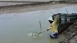 Mancing Kepiting Di Tambak