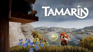 videó Tamarin