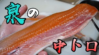 日本三大怪魚の一角にそびえる『泉の中トロ』イトウのお味がすさまじいらしい