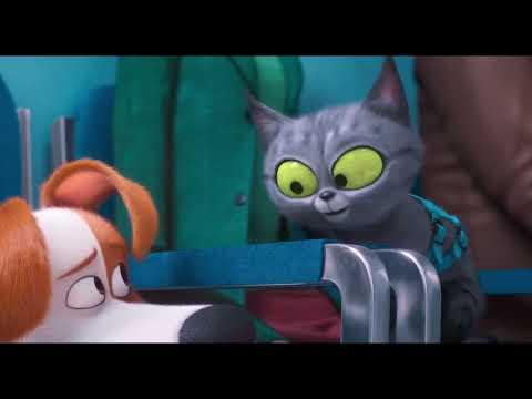 «Тайная жизнь домашних животных 2» (2019) — трейлер мультфильма