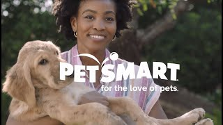 Pet Parents: We're in this journey together! | PetSmart