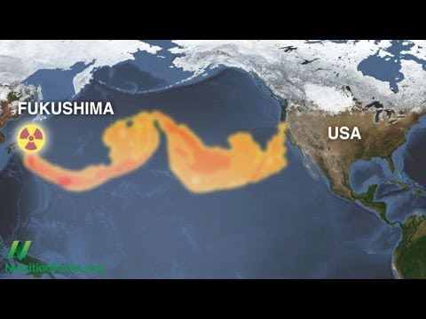 Youtube fukushima radioactivity in seafood nuclear news for Pacific ocean radiation fish